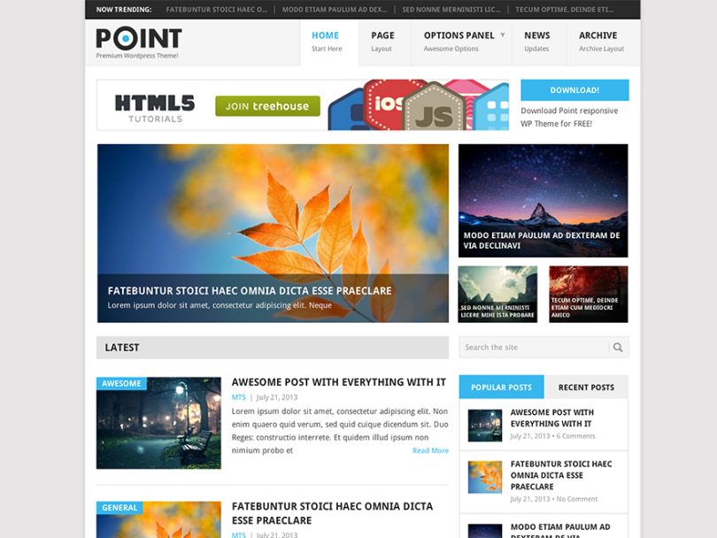 Point-wordpress-adsense